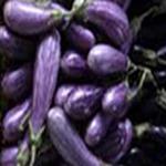 Eggplant/case
