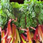 Swiss Chard/case
