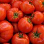 Tomatoes, Beefsteak/case
